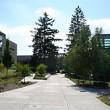 Vet Tech Schools in Oregon